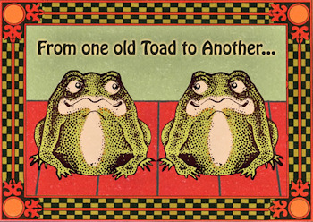 Frog birthday cards and frog belated happy birthday cards old toads hoppy birthday card bookmarktalkfo Images