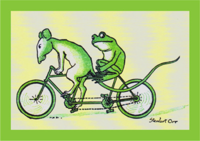Frog birthday cards and frog belated happy birthday cards – Bicycle Birthday Cards