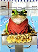 Frog With Medals Birthday Card