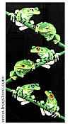 Green Frogs Beach Towel