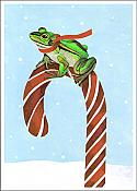 Hoppin' Christmas Candycane Frog Cards (15)