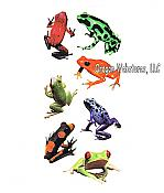Realistic Rainforest Frog Stickers