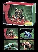 Little Hoppers Boxed Frog Cards