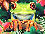 """Tree Hugger"" Red-Eyed Tree Frog Puzzle (550 piece)"