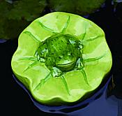 Ceramic Floating Frog on Lilypad