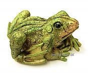 Little Leaf Pattern Garden Frog