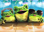 Poolside Party Frogs Birthday Card