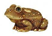 Harmony Kingdom: Samsara Frog