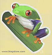 Diecut Red Eyed Treefrog Sticker