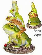 Bergsma Hoppy Frogs: Top Frog