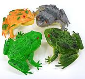 Four Assorted Colorful Frogs
