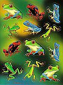 Tree Frogs: Stickers (48)