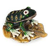 White-Footed Frog Jewel  Box
