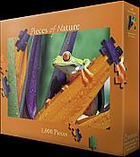 Treefrog in Paradise Puzzle (1000 piece)