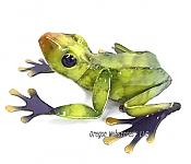 Green Metalwork Enameled Frog