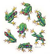 Sun Frogs T-Shirt