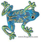 Shiny Tree Frog Iron-On