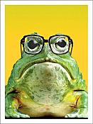 """Have An Eye Opening Experience""  Frog Birthday Card"
