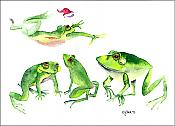 Leaping Santa Frog Holiday Cards (10)