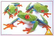 Red-Eyed Treefrogs Puzzle (100 piece)