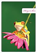 Hang in There Frog Get-Well Card