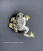 Gold & Crystal Frog Pin