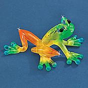 """Caribbean"" Glass Frog"