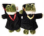 Frog Graduate Bean Plush