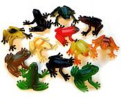 Realistic Plastic Frogs (12)