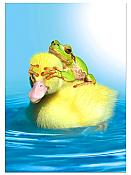 Frog & Duck Surprise Birthday Card