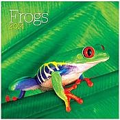 Frogs 2014 Wall Calendar