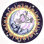 Peace Frogs: Starry Night Sticker