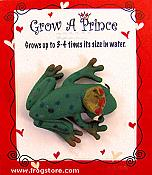 Grow a Frog Prince: Hopping