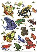 Giant Shiny Frog Stickers