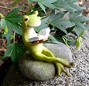 Tiny Frog Reading on Stone