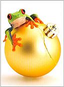 """Hopping Good Time"" Frog Christmas Card (one card)"
