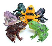 Assorted Vinyl Frog Toys (6)