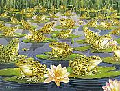 """Frogs on Lily Pad"" Blank Frog Card"