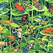 Rainforest Frogs Fabric