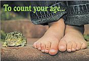 """To Count Your Age..."" Frog Birthday Card"