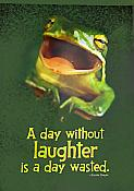 """A Day Without Laughter"" Frog Poster"